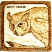 "4-2011, ""Great Horned Owl"", donated to Sulfur Creek Nature Center"